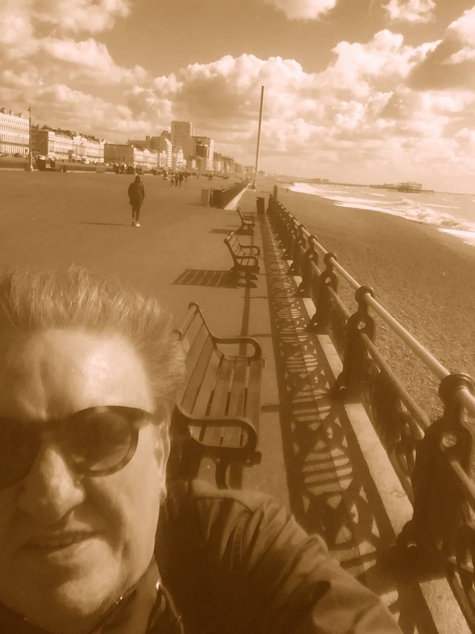 4c109ecb6eac Brighton the sea gull city